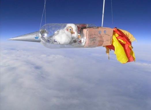 Клубень картофеля запустили в космос